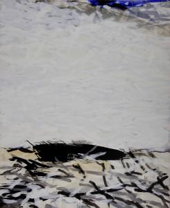 Abb. 5 Das, was Elger Esser uns (zu recht) nicht zeigen wollte 2009 110 x 90 cm Kopie